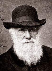 Charles Darwin Customer Experience Business Evolution